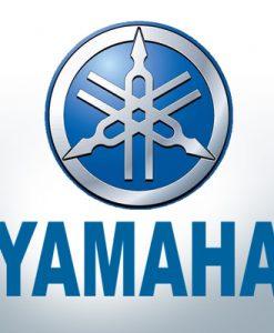 Anodes compatibles avec Yamaha et Yanmar zinc